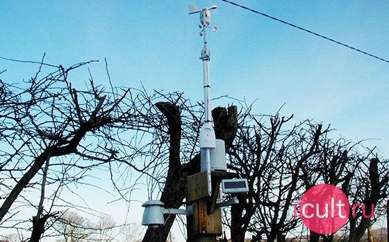 Oregon Scientific Professional Wireless Weather Station