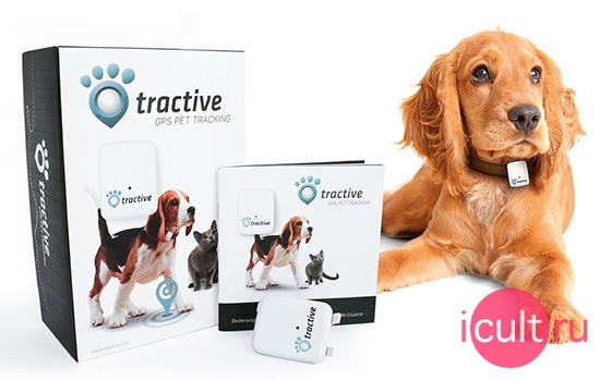 Tractive GPS Pet Tracker