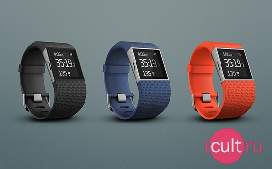 Fitbit Surge Large Blue
