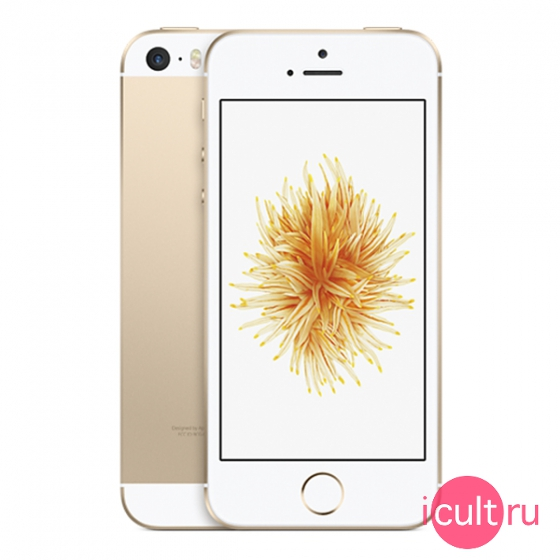 Смартфон Apple iPhone SE 64Gb Gold золотой LTE A1723