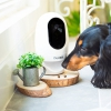 Wi-Fi камера наблюдения с лазером и выдачей корма Pawbo Life Wi-Fi Pet Camera белая PPC-21CL