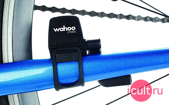 Wahoo Blue SC Speed And Cadence Sensor WFBTSC02